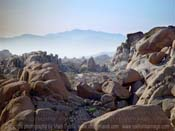 Joshua-Tree-Rocks